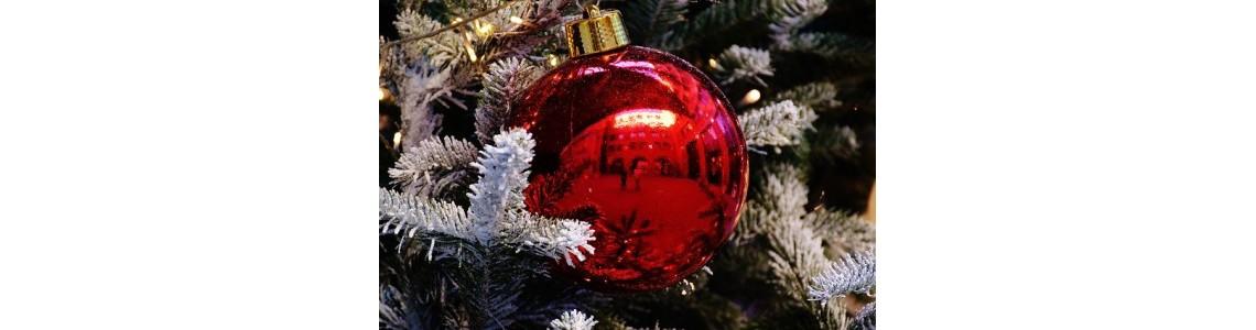 Přejeme Veselé Vánoce, aneb Co jste o Vánocích možná nevěděli!
