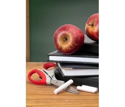Vztah a pomoc namísto trestů jako metoda skvělého učitele