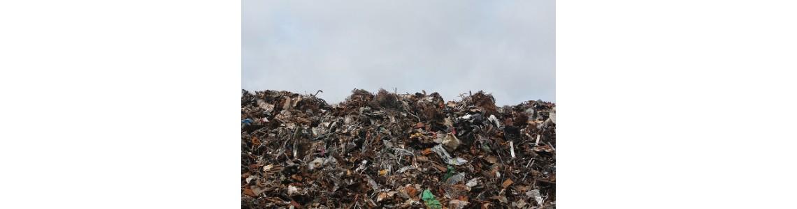 Jak nakládat s odpady ve školních jídelnách? Manuál poradí, jak na to