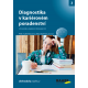 Diagnostika v kariérovém poradenství