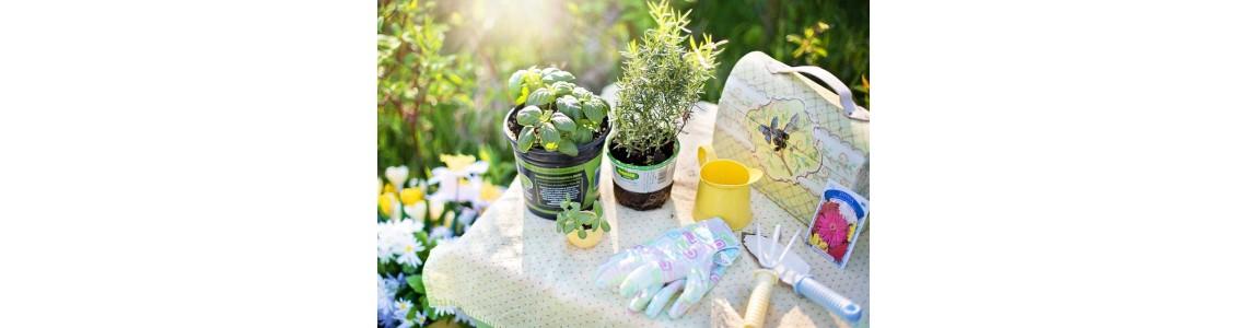 Inspirujte se jarními aktivitami s bylinkami!